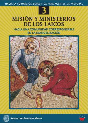 Misión y ministerio de los laicos, 3. Hacia la formación específica para agentes de pastoral